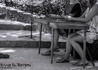 Instrumentos clásicos